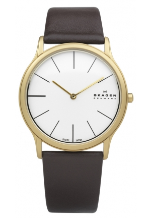 Skagen Gents Brown Leather Steel Watch
