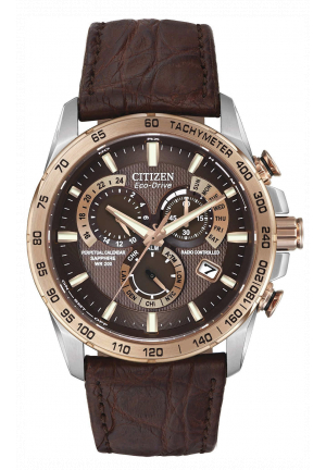 CITIZEN PCAT, 42MM