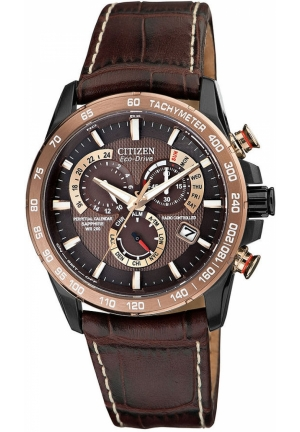 Citizen Men's Stainless Steel Eco-Drive Watch with Leather Band