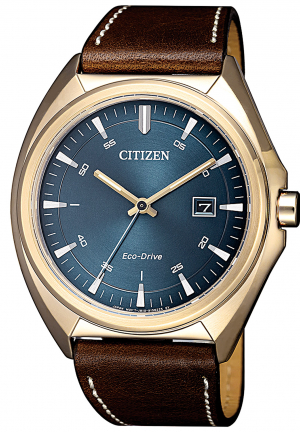 Citizen Date Men's watch