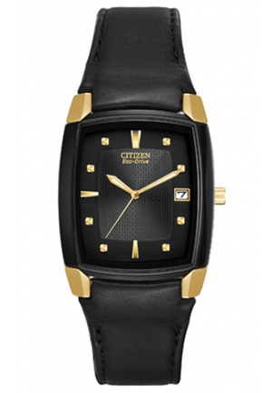 Citizen  Eco-Drive Leather Watch