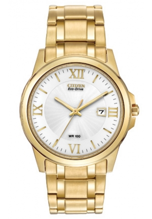Citizen Men's Stainless Steel Eco-Drive Watch