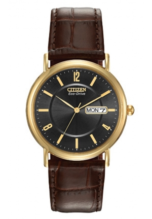 CITIZEN Eco Drive Black Dial Gold-tone Stainless Steel Brown Leather Men's Watch
