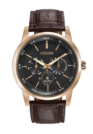 Citizen Men's Eco-Drive Gold-Tone Watch with Brown Leather Band