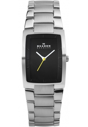 Skagen Mens Silver Black Watch 27mm