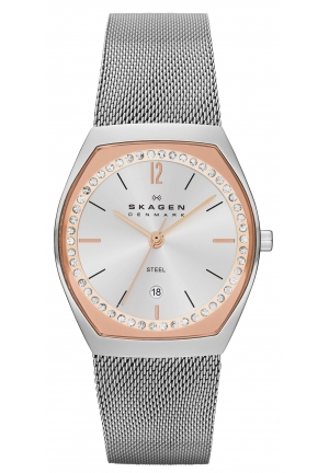 Skagen Women's SKW2051 Asta Quartz 3 Hand Date Stainless Steel Silver Watch