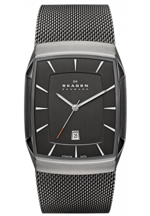 Skagen Aktiv Grey Mesh Men's Titanium Watch
